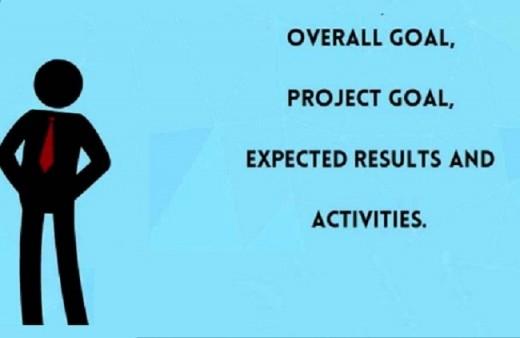 Main Objective of LFA
