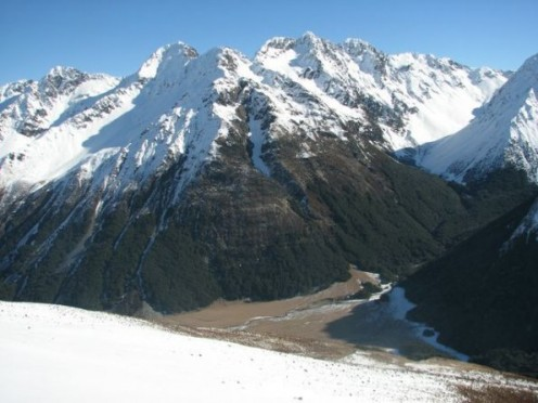 Hunting the high ground in the South Island means you are not only sure to encounter deer; but also Tahr and Chamois.