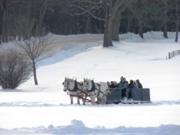 Winter sleigh ride at Shelburne Farms.