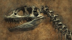 Dinosaurs: What's The Big Deal?