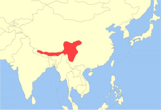 Current habitat and distribution of the Red Panda.