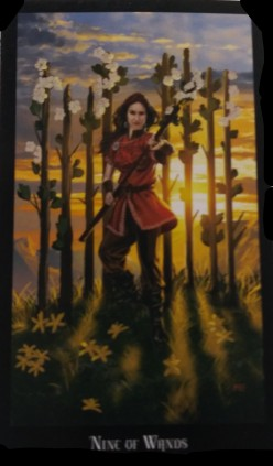 Nine of Wands, Keep Going, Don't Give Up!