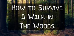 How to Survive a Walk in the Woods