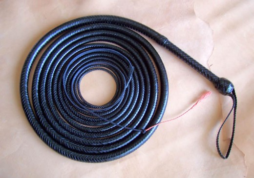 Indy Style 25 foot leather bull whip!