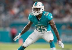 2019 NFL Season Preview- Miami Dolphins