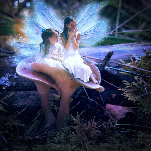 My Fairy Sister photo composite