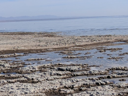 Beach along Salton Sea.  Sea has been shrinking in recent years due to less water being diverted into it from Colorado River.