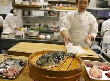Japanese Pufferfish - Fugu