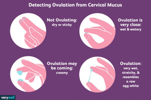 Changes in your cervical mucous can indicate where you are in your menstrual cycle.