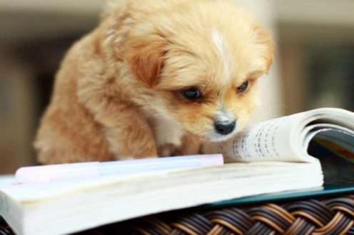 You got this! Happy studying!