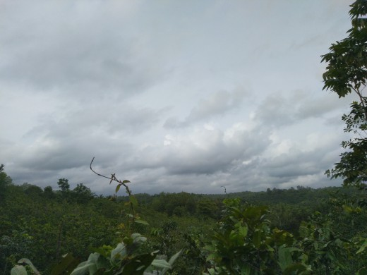 A cloudy fearsome landscape from Kerala, India