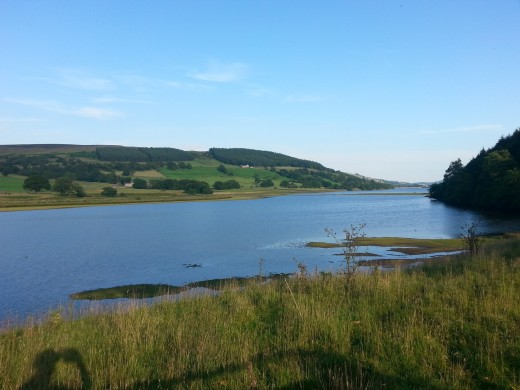 The expanse of Gouthwaite Reservoir, seen from the road to Pateley Bridge