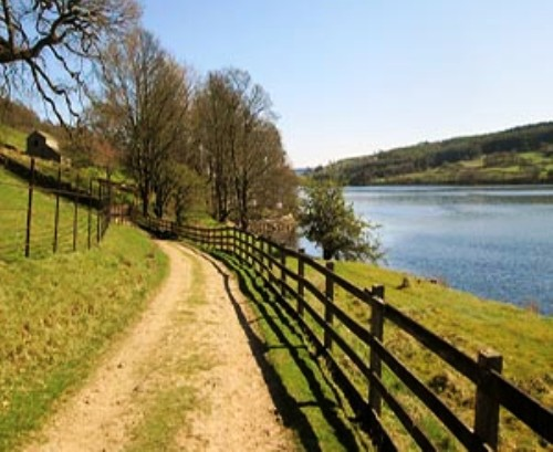 The Gouthwaite Reservoir Walk is undulating, to say the least. It'll give you an appetite for your evening meal - if you can last out that long