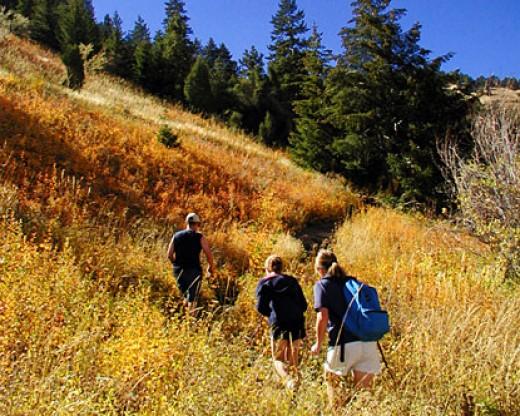 Hiking trails in Breckenridge
