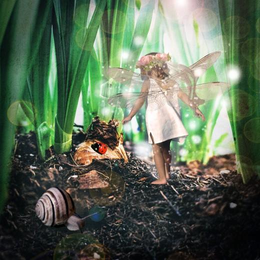 Flower Bulb Fairy
