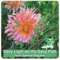 Daily Light on the Daily Path: A Devotional Book Like No Other