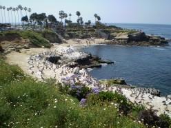 La Jolla Cove, San Diego, California.