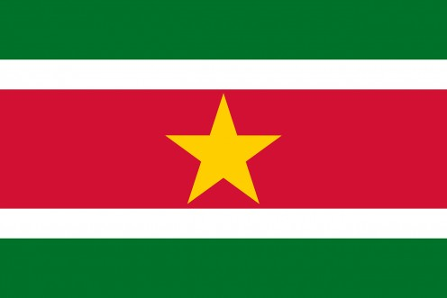 This is the flag of suriname