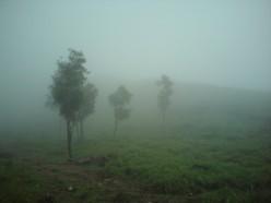 """The beauty of Kerala: Golden Peak """"Ponmudi"""" Trip"""