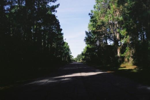 Just a road. I like walking and I like roads.