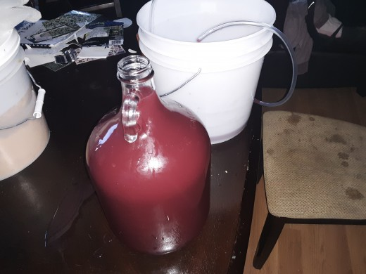 Freshly siphoned plum wine