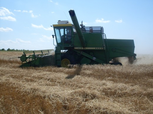 "Often, a corner of wheat is ""missed"", to allow the combine to get turned and lined up correctly with the remaining wheat.      The driver comes back and catches those ""corners"" later."