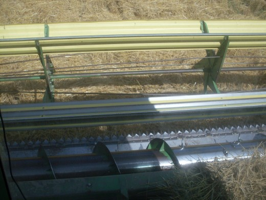 Here you can see the various parts of the header - the blades, the sickle bar, the auger. A bit of unprocessed wheat always stacks up in the center, where the header attaches to the combine.