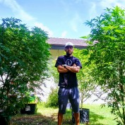 Thecannabisadvocate profile image