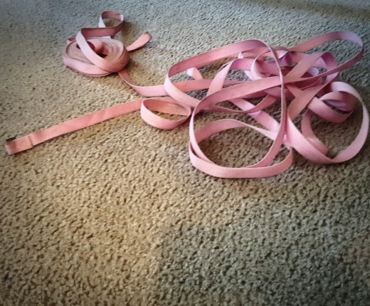 Lead Leashes Can be Strangulation Hazards For Small Children.