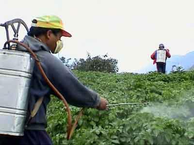 a man spraying pesticide in a field