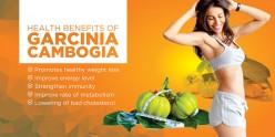 How Garcinia Cambogia Lose Heavy Weight?