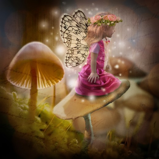 Another Fairy photo composite.