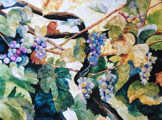 The watercolor grapevine.