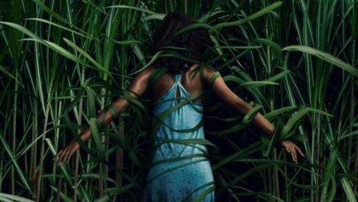 """In the Tall Grass"" Official Netflix Original Movie Poster"