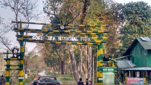 The entrance gate of Gorumara National Park (Lataguri)