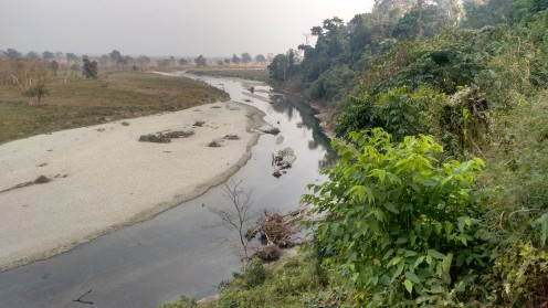 The panoramic vies of the greenery and rivulet
