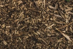 Five Advantages of Mulching During the Spring