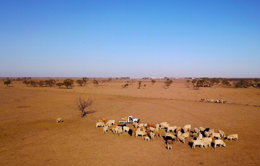 Because of the Australian drought, there are properties that are becoming deserts. The farmers that own these properties hope that it rains and that the government helps them. But there is no help because of the assets test. This can make you cry.