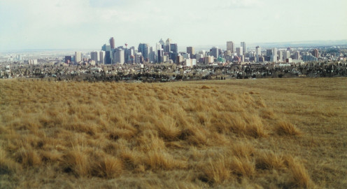 View of downtown Calgary, Alberta, Canada, from Nose Hill Park