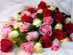 Some Colours of Love. Saturday's Inspirations 20, to Rinita Sen