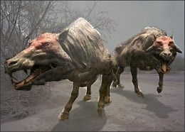 extinct Devil Pig
