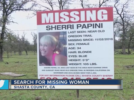 Sherri Papini vanished while jogging near her Redding, California home and reappeared 22 days later beaten and traumatized.