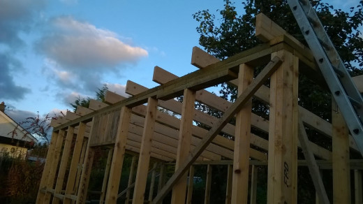 Rafters in place.