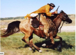 A Brief History of the Pony Express