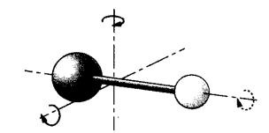 Diatomic Molecule Rotation