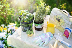 What Types of Tools Do You Need to Clean A Garden Properly