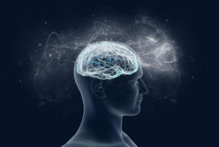Magnesium Supplements can Prevent Neurodegeneration and Reverse Cognitive Deficits in the Aging Mind