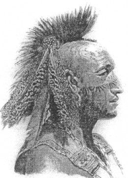 A Pequot from before the latter half of the 20th century. Today, some in the Pequot Nation have no native heritage.