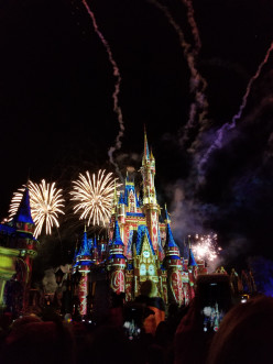Why Did Disney World Switch to Solar Energy?