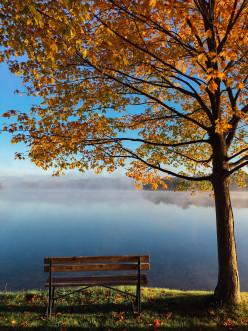 Sitting & Thinking: A Poem